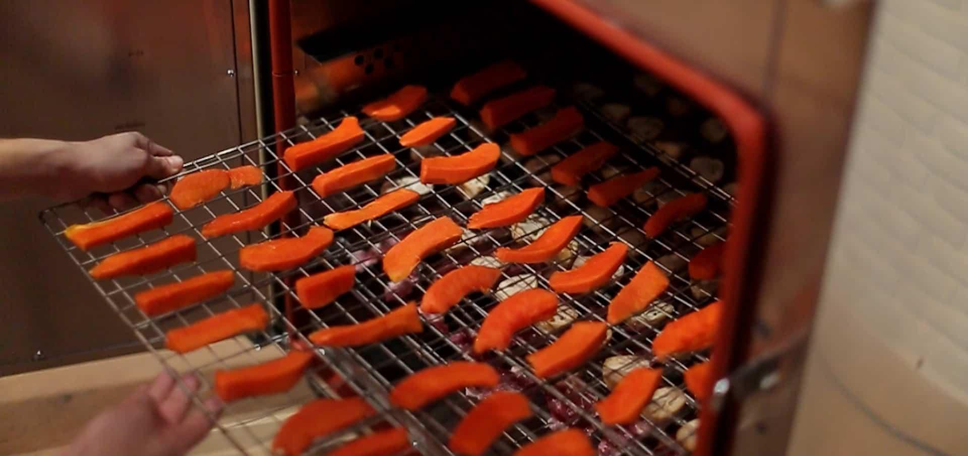 Máy sấy thực phẩm khí nóng công nghiệp GE có nhiệt độ tối đa tới 120 độ
