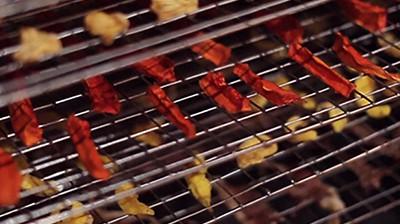 Máy sấy thực phẩm khí nóng công nghiệp GE - Sấy dễ dàng mọi loại thực phẩm