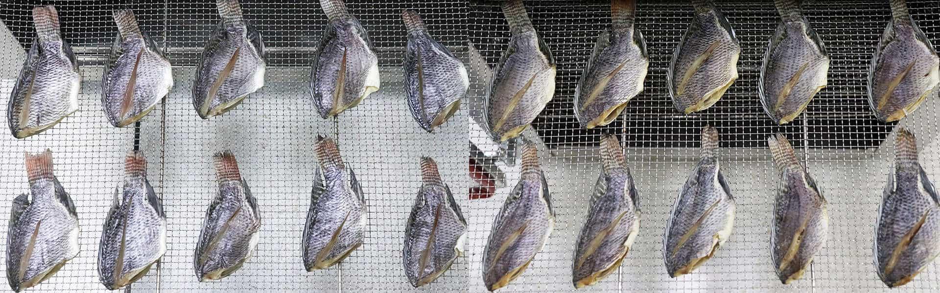 Máy sấy thực phẩm khí nóng công nghiệp GE - Cá rô trước và sau khi sấy