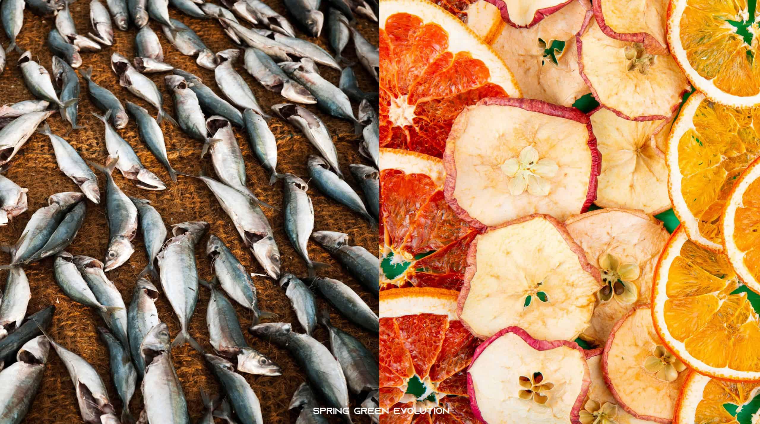 201118-Content-หลักการถนอมอาหารและเมนูถนอมอาหาร-04