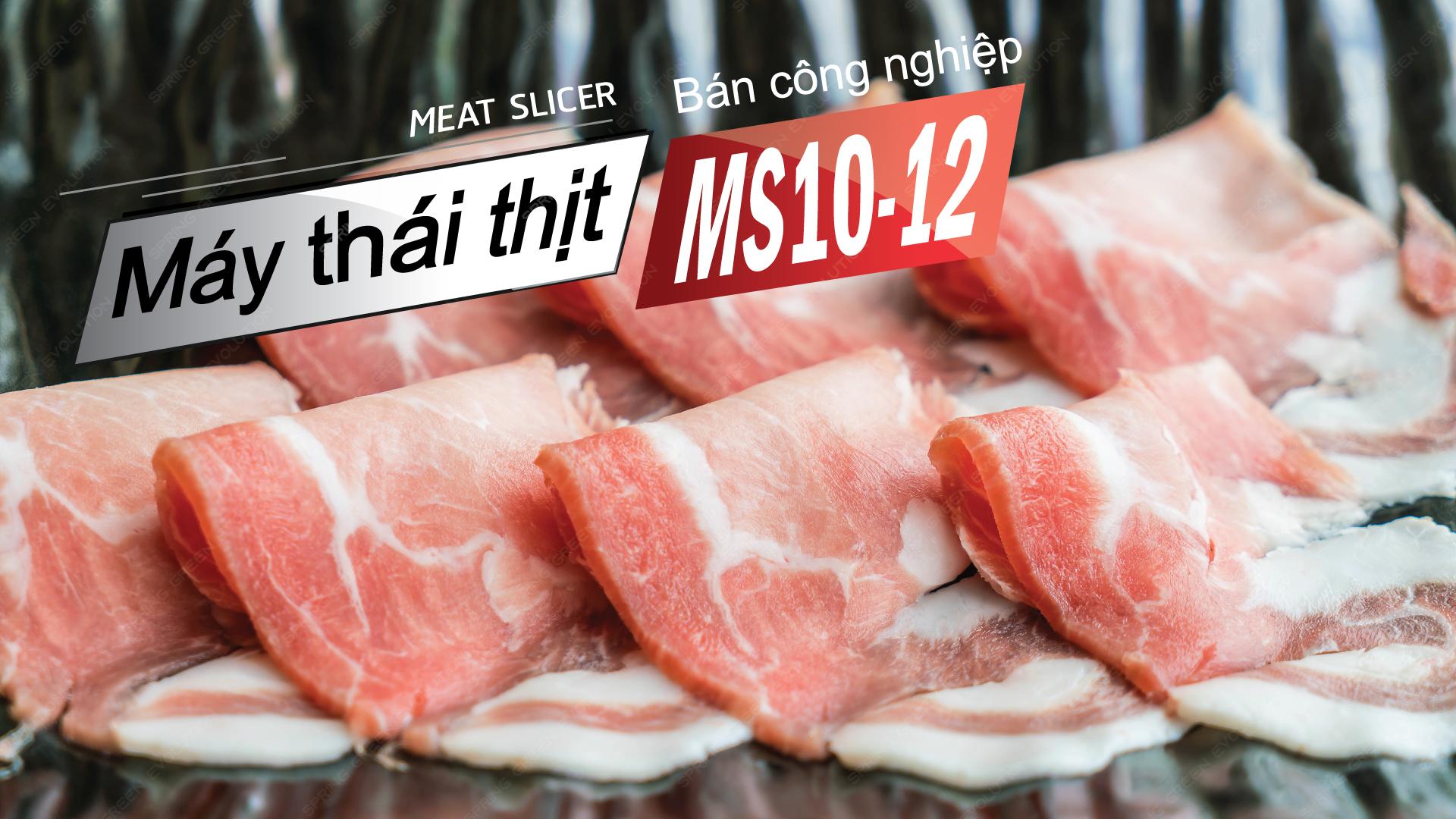 -máy-cắt-thịt-ms10-(5)
